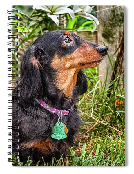 Spiral Notebook featuring the photograph Katie by Jim Thompson