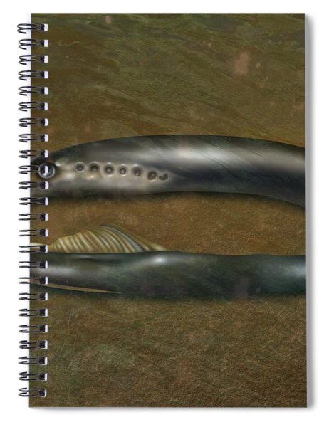 Lamprey Eel, Illustration Spiral Notebook