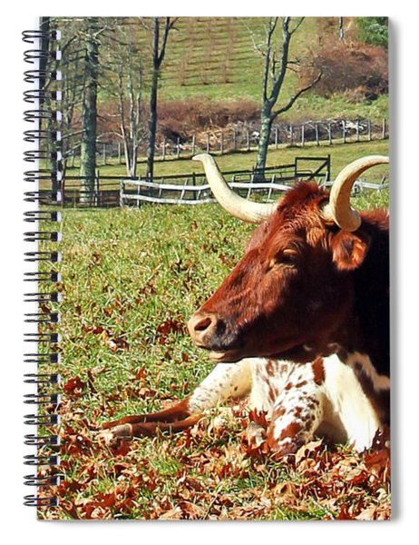 Lazy Morning Bull Spiral Notebook