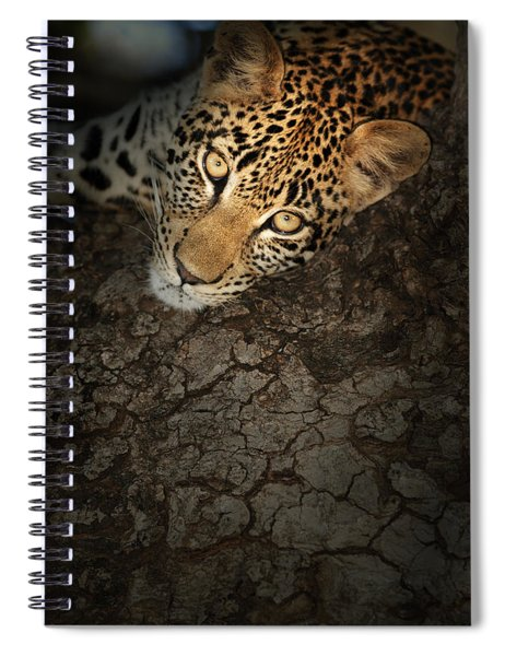 Leopard Portrait Spiral Notebook