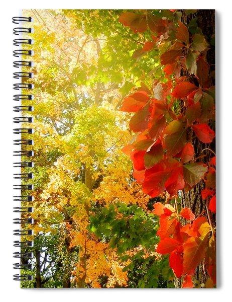Minnesota Jungle Spiral Notebook