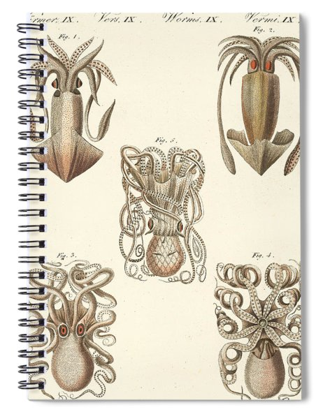 Molluscs Or Soft Worms Spiral Notebook