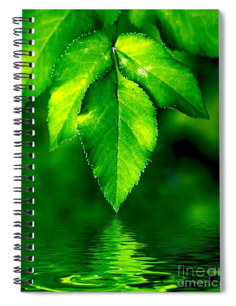 Natural Leaves Background Spiral Notebook