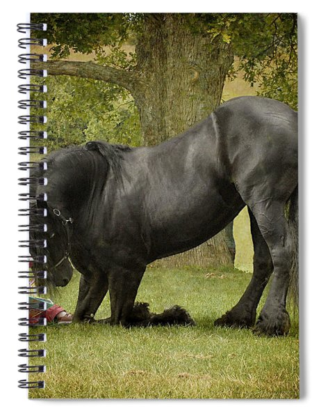 Once Upon A Time Spiral Notebook