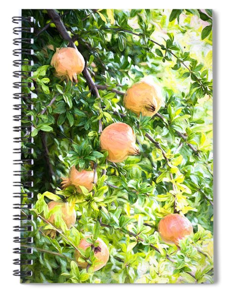 Pomegranate 2 Spiral Notebook