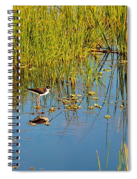 Reflection Of A Bird On Water, Boynton Spiral Notebook