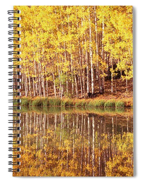Reflection Of Aspen Trees In A Lake Spiral Notebook