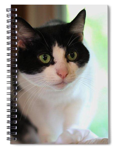 Sadie 4 Spiral Notebook