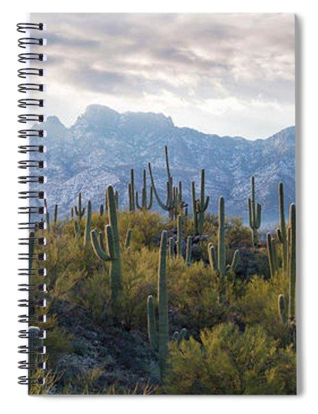 Saguaro Cactus With Mountain Range Spiral Notebook