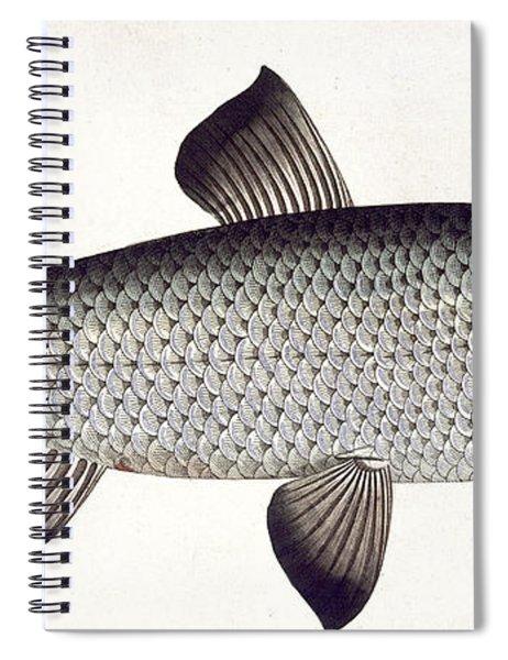Salmon Spiral Notebook