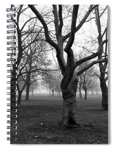 Seaside By The Tree Spiral Notebook