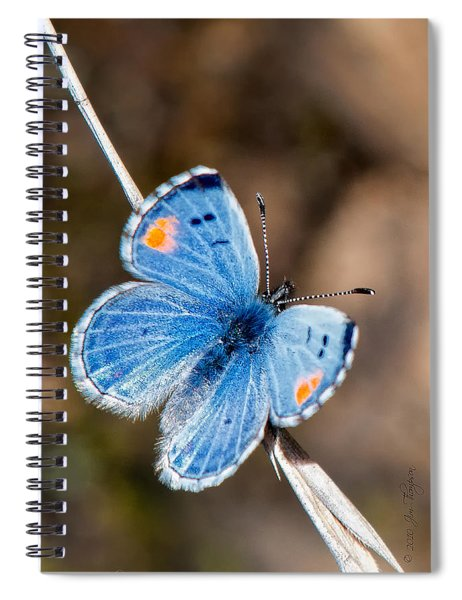 Spiral Notebook featuring the photograph Sonoran Blue by Jim Thompson