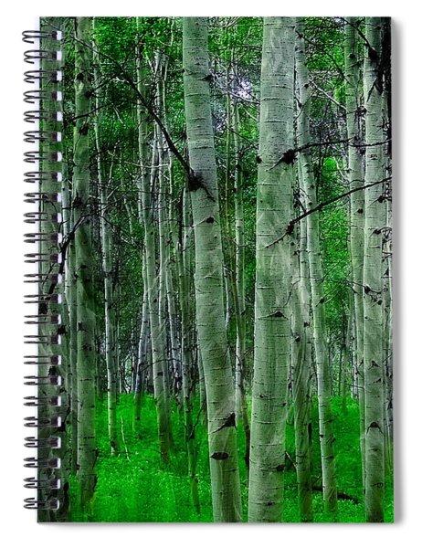 Spectacular Aspens Spiral Notebook