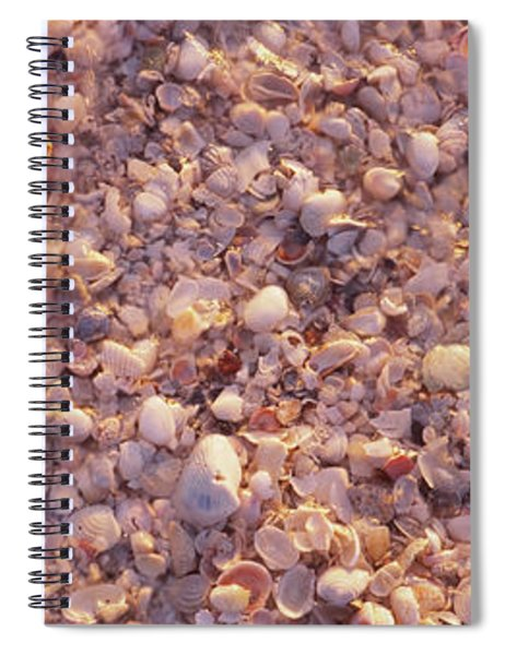 Starfish On The Beach, Lovers Key State Spiral Notebook