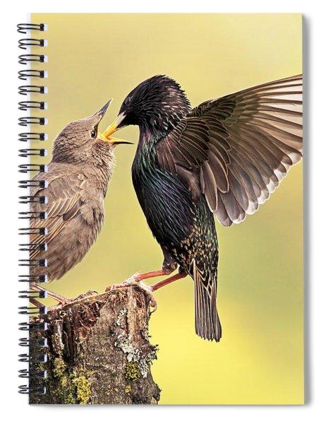Starlings Spiral Notebook