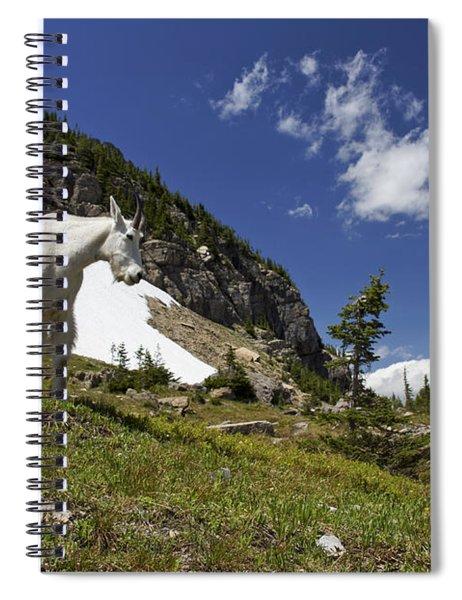 Stoic Mountain Goat  Spiral Notebook