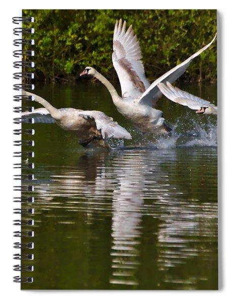 Swan Take-off Spiral Notebook