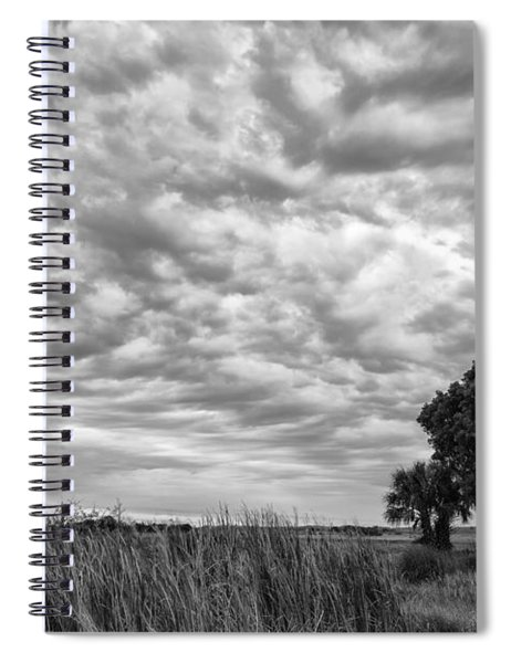 The Right Tree Spiral Notebook