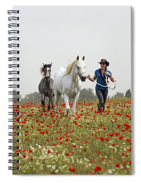 Three At The Poppies' Field... 3 Spiral Notebook