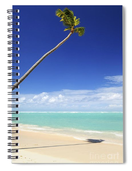 Tropical Beach And Palm Tree Spiral Notebook
