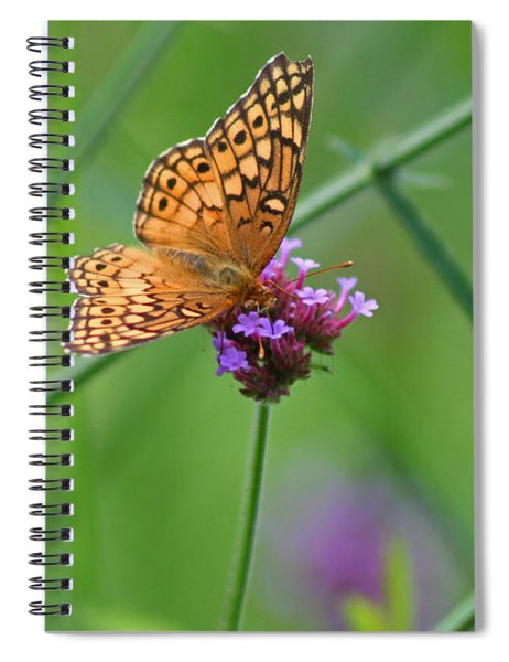 Variegated Fritillary Butterfly In Field Spiral Notebook