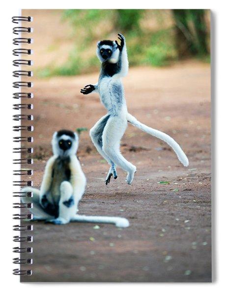 Verreauxs Sifaka Propithecus Verreauxi Spiral Notebook