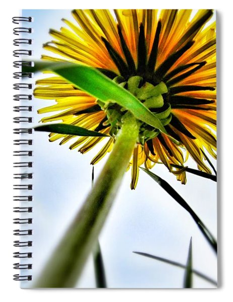 What's Up? Spiral Notebook