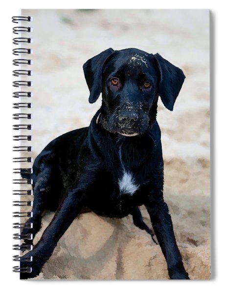 Who Me ? Spiral Notebook