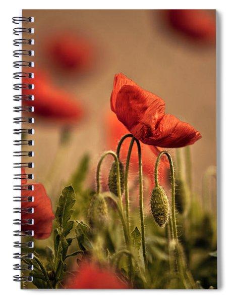 Summer Poppy Spiral Notebook