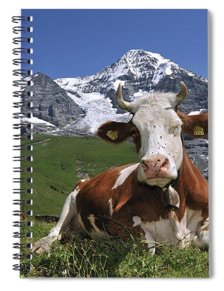 100205p181 Spiral Notebook