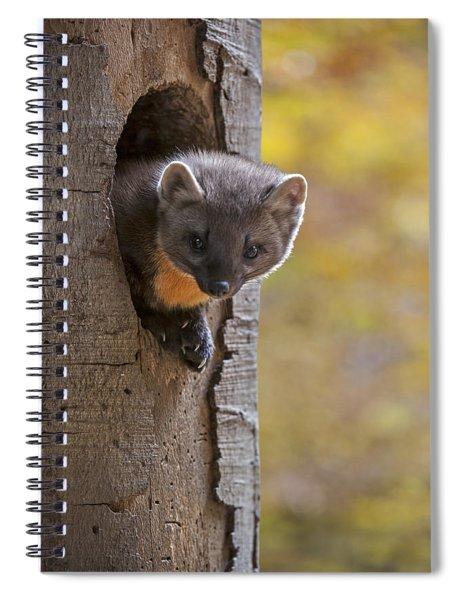 131114p020 Spiral Notebook