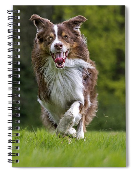 140420p079 Spiral Notebook