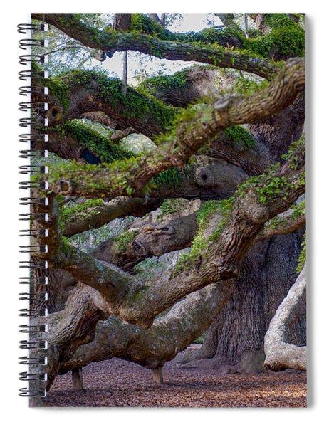 Angel Oak Tree Unique View Spiral Notebook