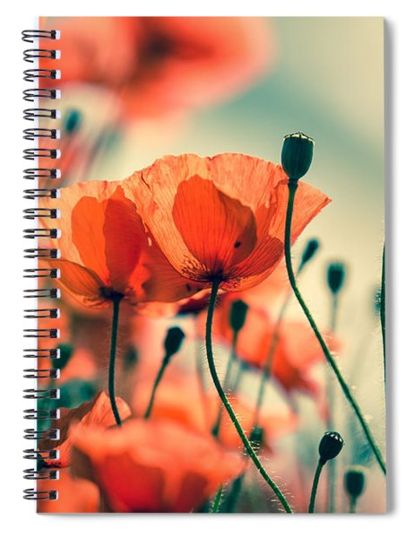 Poppy Meadow Spiral Notebook