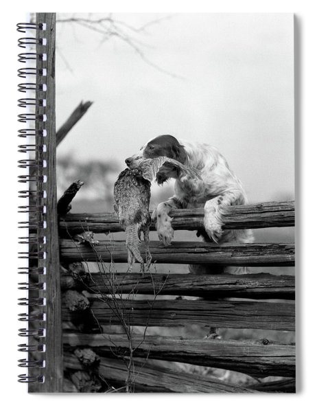 1920s English Setter Dog Climbing Spiral Notebook