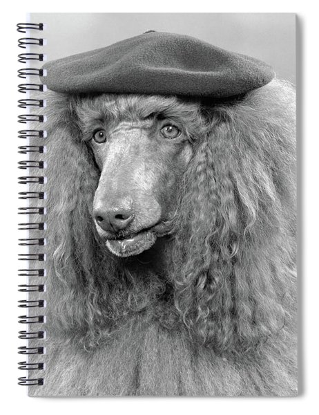 1970s French Poodle Wearing Beret Spiral Notebook
