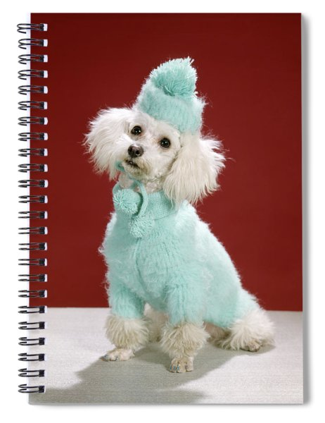 1970s White Poodle Wearing Blue Sweater Spiral Notebook