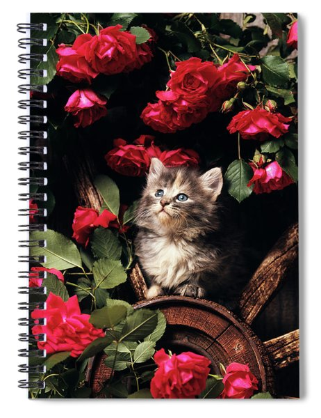 1980s Blue Calico Longhaired Kitten Spiral Notebook