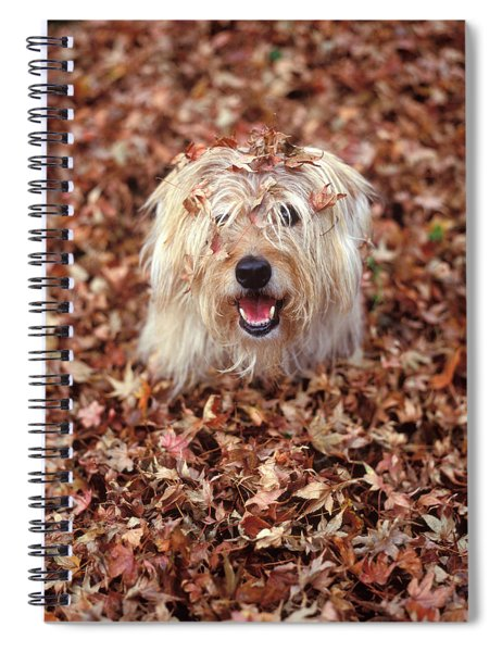 1990s Dog Covered In Leaves Spiral Notebook