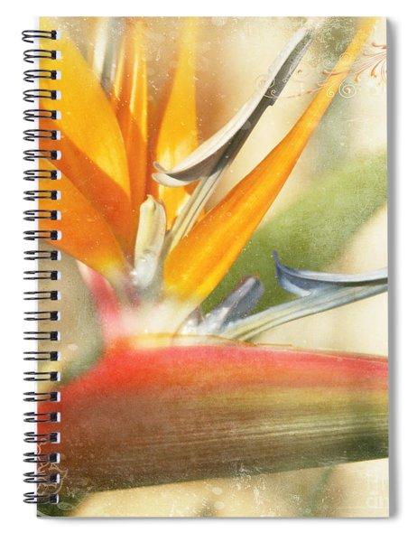 Bird Of Paradise - Strelitzea Reginae - Tropical Flowers Of Hawaii Spiral Notebook