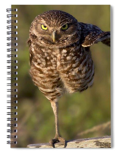 Burrowing Owl Photograph Spiral Notebook