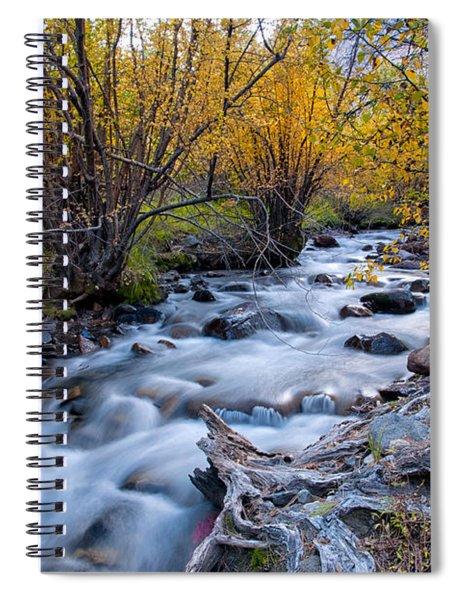 Fall At Big Pine Creek Spiral Notebook
