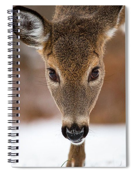 Heres Looking At You Spiral Notebook