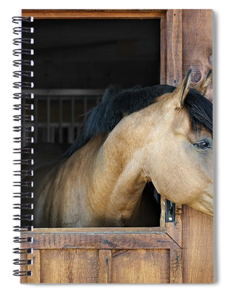 Horse In Stable Spiral Notebook