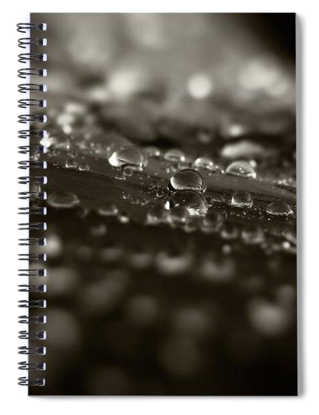 Morning Dew Spiral Notebook
