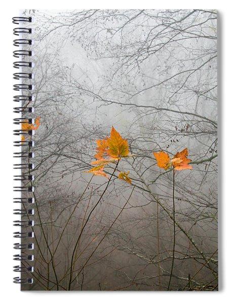 Mountain Fog Spiral Notebook