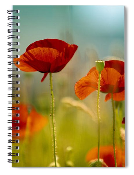Summer Poppy Spiral Notebook