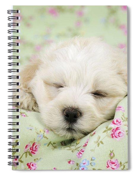 Teddy Bear Puppy Dog Spiral Notebook