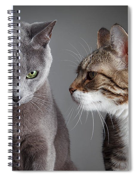 Two Cats Spiral Notebook