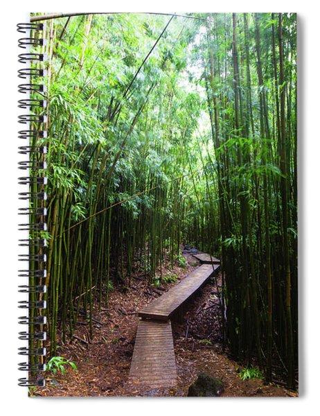 Boardwalk Passing Through Bamboo Trees Spiral Notebook